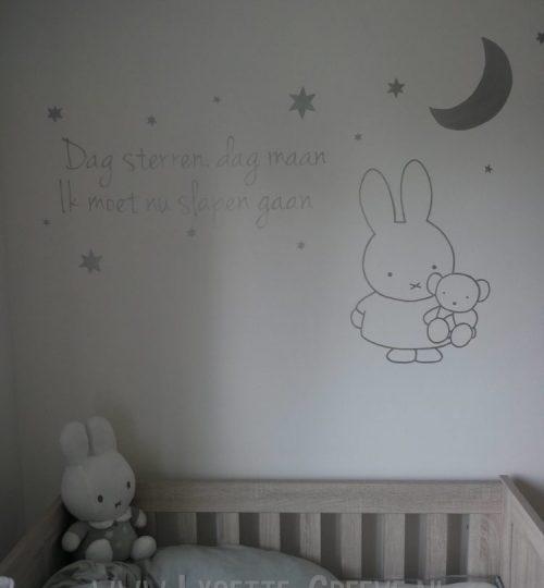 Nijntje muurschildering tekst